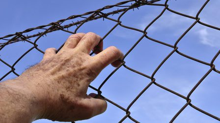 Barbed-wire-1408454_1920_thumb_main